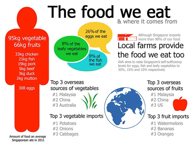 Can We Feed The World With Organic Food